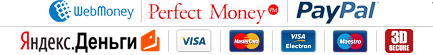 WebMoney, Perfect Money, PayPal, Yandex.Money, Visa, Mastercard