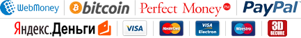 WebMoney, BitCoin, Perfect Money, PayPal, Yandex.Money, Visa, Mastercard
